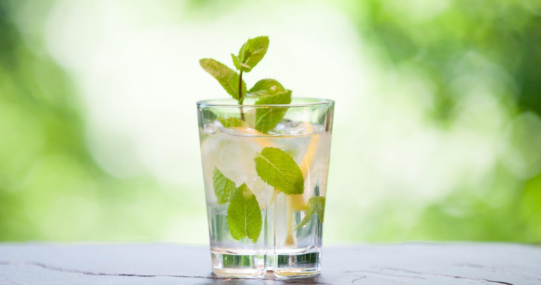 Low Carb: Zitronen-Minzwasser - belebend und erfrischend
